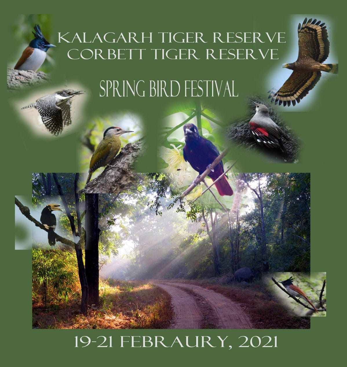 3 days Spring Bird Festival from 19th february to 21st february 2021.